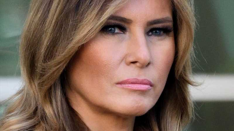 The Controversial Thing That Melania Trump Reportedly Agreed With Donald Trump On