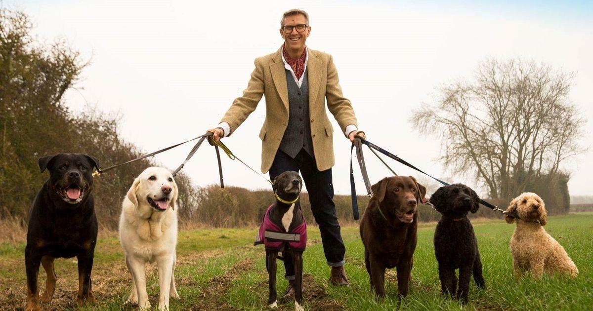 'The Dogfather' Graeme Hall says you shouldn't give dogs ice cubes to eat
