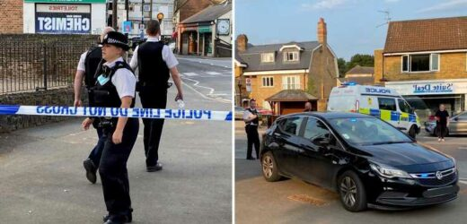 Woman, 19, stabbed on High Street in front of horrified shoppers as cops flood to the scene