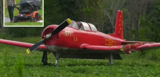 Woman mowing lawn is struck and killed by plane as it came in to land at Canadian airport