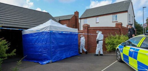 Detectives probing mystery death of man and woman found at house are 'not seeking anyone else'