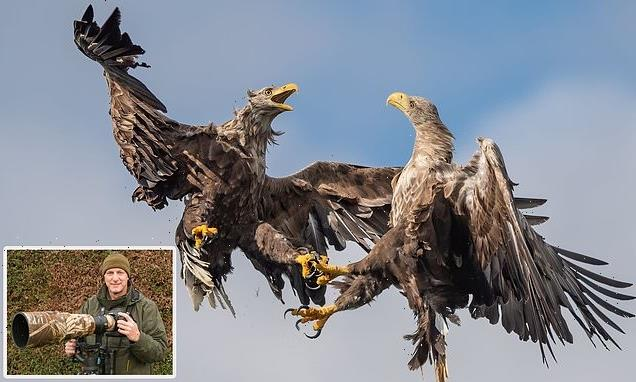 Eagles square up for featherweight title in stunning image of fight