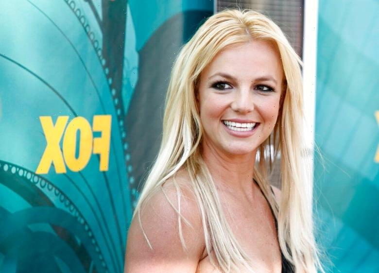 Framing Britney Spears: There Are a Million Stories Like Spears, We Just Dont Know Them