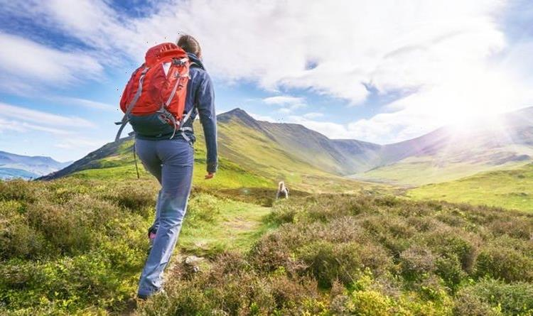 Green Britain: Play your part in saving the 'amazing' British countryside this autumn