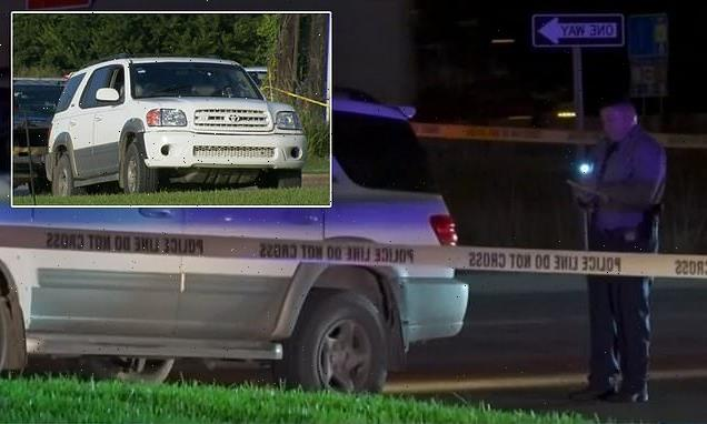 Two brothers steer car to safety after dad fatally shot while driving