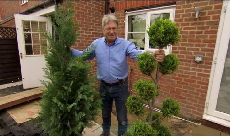 'Be careful': Alan Titchmarsh shares top tips for mastering cloud pruning