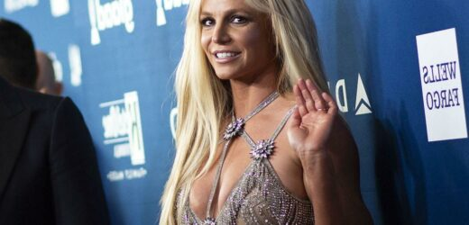 'Britney Vs Spears' Director Says People Told Her They 'Absolutely' Would Not Talk to Her on Camera