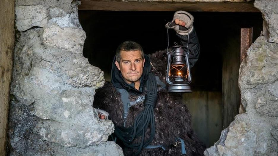 'You vs. Wild: Out Cold' Trailer: Help Bear Grylls Pick Which Mountain Bug to Eat (Video)