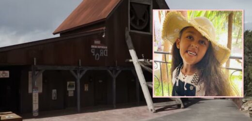 6-Year-Old Girl Who Died After Falling From Haunted Mine Drop Ride Was Not Buckled In, Report Says