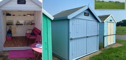 Beach hut with uninterrupted sea views goes on the market for £45,000