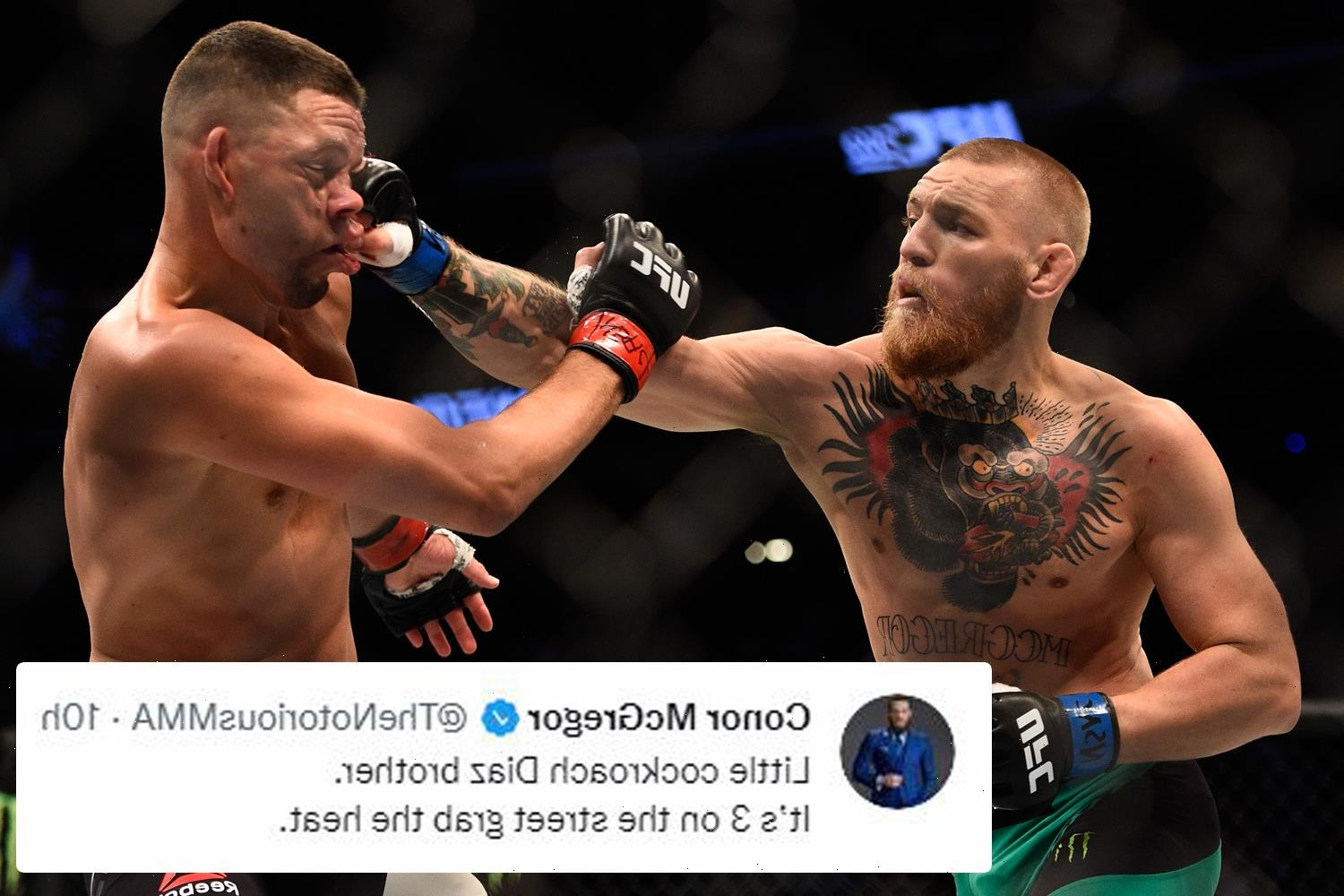 Conor McGregor brands Nate Diaz a 'cockroach' and brags about his UFC bloodbath win over rival