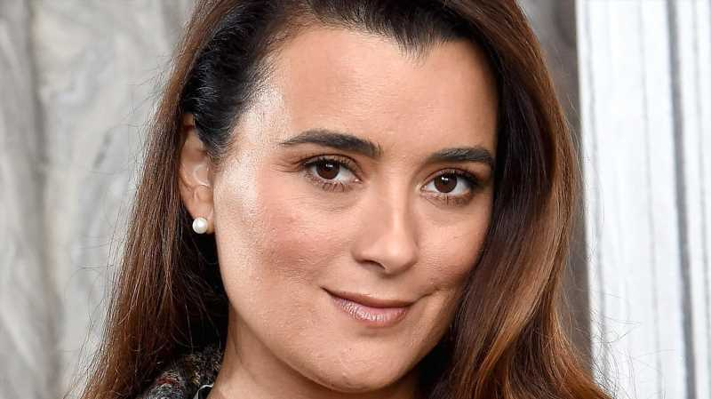 Cote De Pablo Had To Face This Major Fear To Star In NCIS