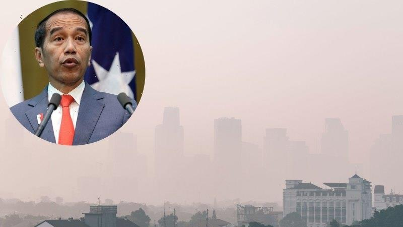 Court rules Indonesian President, ministers negligent on air quality