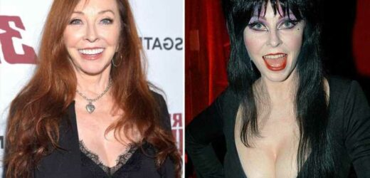 Elvira, now 70, comes out as a lesbian and reveals secret 19-year relationship with female personal trainer in memoir