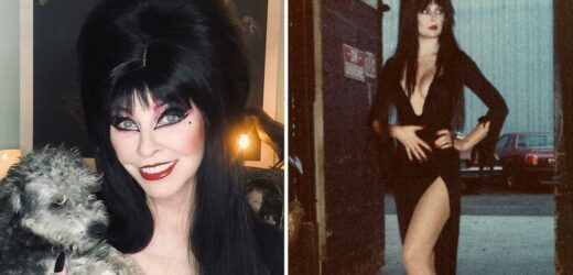 Elvira on 'Hanging Up the Dress,' Selling Brad Pitt a Haunted House & Famous Conquests (Exclusive)