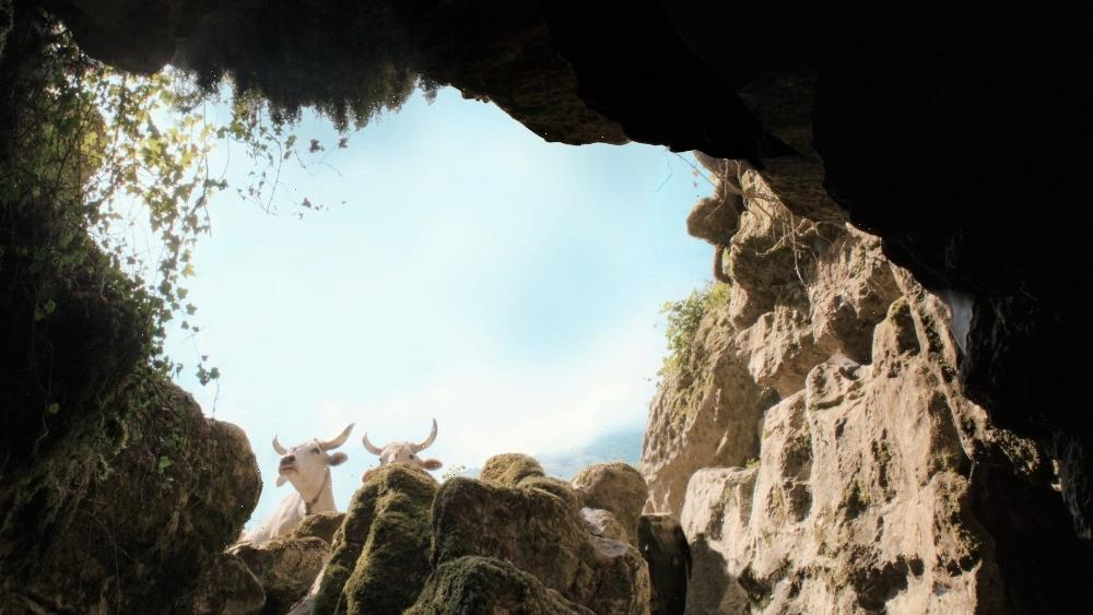 Il Buco Cinematographer Renato Berta on Challenge of Shooting in the Darkness of Europes Deepest Cave