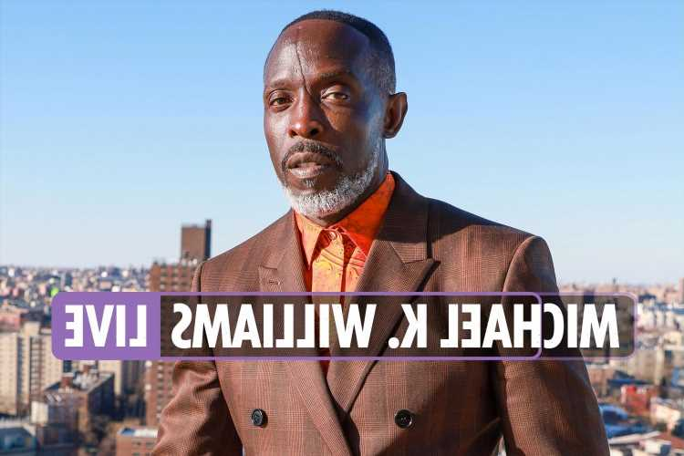 Michael K Williams death latest news – The Wire star found dead in Brooklyn apartment 'from suspected drug overdose'