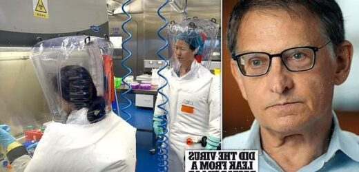 Scientist heard about Covid TWO WEEKS before Beijing warned the world