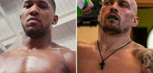 Usyk is 'best boxer Anthony Joshua will EVER face in his career', says Bellew.. despite Tyson Fury waiting in wings