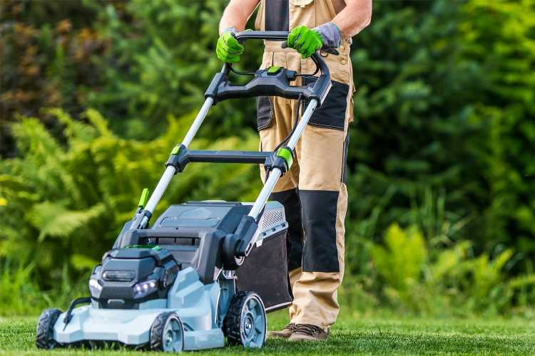 Warning over using new E10 petrol in lawnmowers as it could damage garden equipment