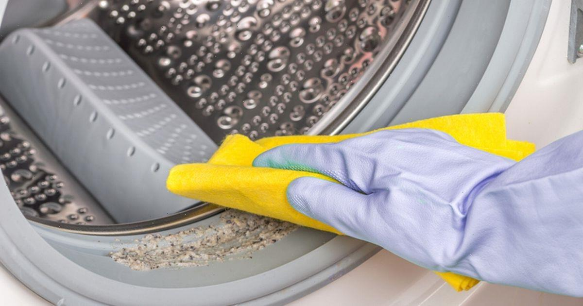 Cleaning expert shares UK's filthiest washing machines – and shares top advice