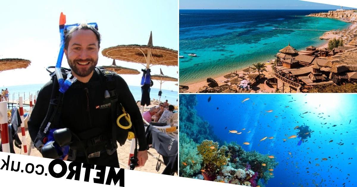 Discover Egypt's underwater diving paradise at Sharm El-Sheikh
