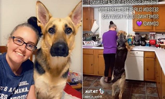 Epileptic woman's service dog warns she is about to have a seizure