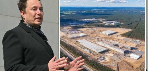 'If they let us!' Musk fumes as EU red tape means Berlin factory STILL can't open doors