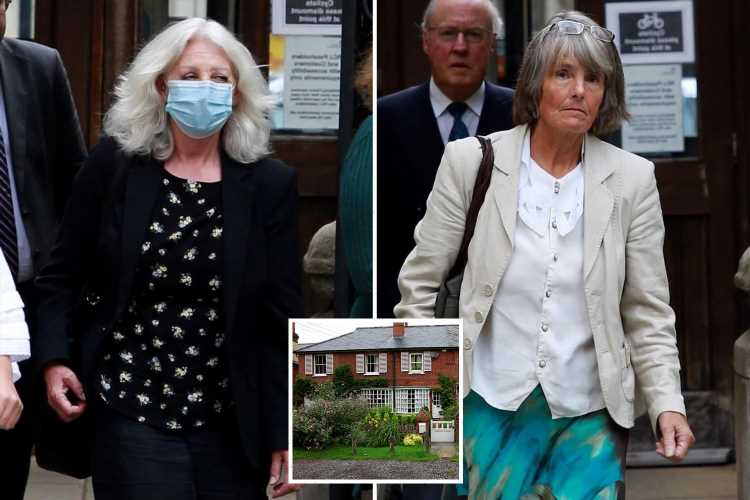 'Vindictive' gardener forced to pay £250,000 after neighbour is stung by wasps attracted by rotting apples